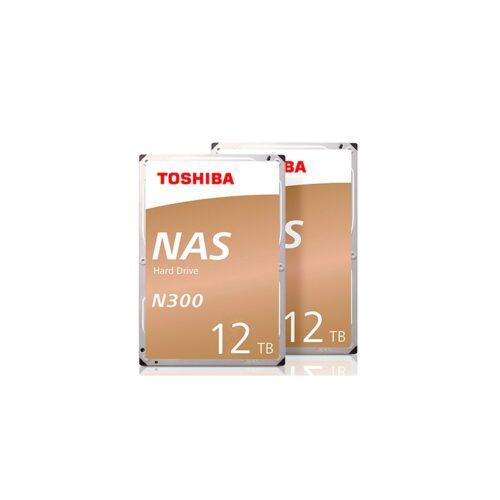 N300-12TB